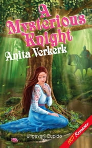 A Mysterious Knight ebook by Anita Verkerk