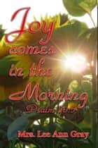 Joy Comes In The Morning ebook by LeeAnn Gray