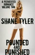 Pounded & Punished ebook by Shane Tyler