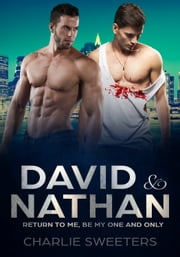 David & Nathan - Return to Me, Be My One And Only ebook by Charlie Sweeters
