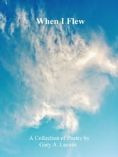 When I Flew ebook by Gary A Lucero