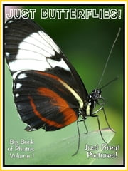 Just Butterfly Photos! Big Book of Photographs & Pictures of Butterflies, Vol. 1 ebook by Big Book of Photos