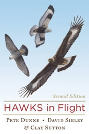 Hawks in Flight - Second Edition ebook by Pete Dunne,Clay Sutton,David Sibley