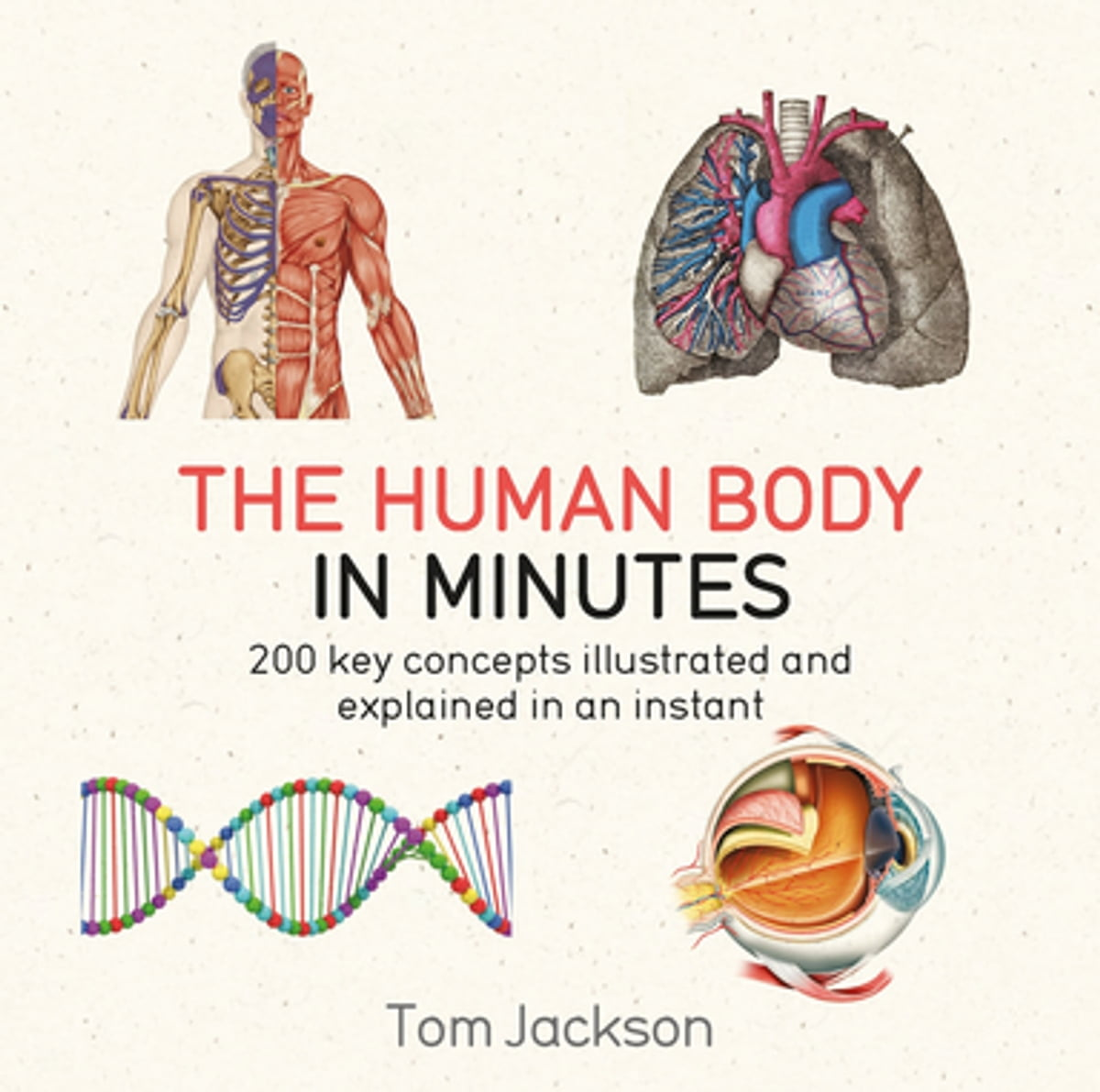 The Human Body in Minutes eBook by Tom Jackson - 9781786481245 ...