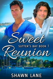 Sweet Reunion ebook by Shawn Lane