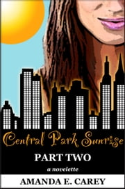 Central Park Sunrise: Part Two of Two-Part Series (A Contemporary Romance) (The Central Park Affair Series) ebook by Amanda Carey