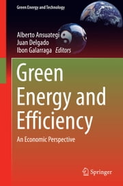 Green Energy and Efficiency - An Economic Perspective ebook by Alberto Ansuategi,Juan Delgado,Ibon Galarraga