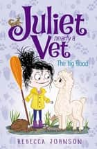 The Big Flood - Juliet, Nearly A Vet ebook by Rebecca Johnson