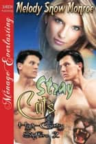 Stray Cats ebook by Melody Snow Monroe