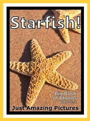 Just Starfish Photos! Big Book of Photographs & Pictures of Under Water Ocean Star Fish, Vol. 1 ebook by Big Book of Photos