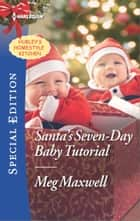 Santa's Seven-Day Baby Tutorial ebook by Meg Maxwell
