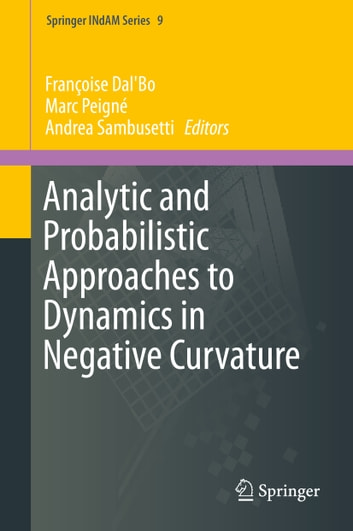 Analytic and Probabilistic Approaches to Dynamics in Negative Curvature ebook by