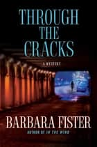 Through the Cracks ebook by Barbara Fister