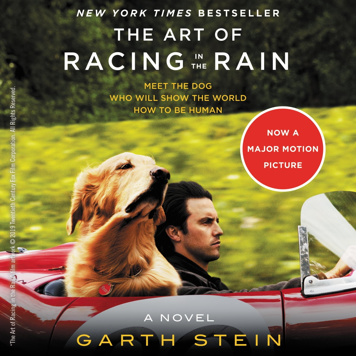 The Art of Racing in the Rain Audiobook by Garth Stein - 9780061630682 |  Rakuten Kobo