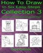How To Draw In Six Easy Steps Collection 3 ebook by Tanya Provines