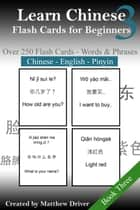 Learn Chinese: Flash Cards for Beginners. Book 3 ebook by Matthew Driver