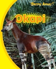 Okapi ebook by Antill, Sara