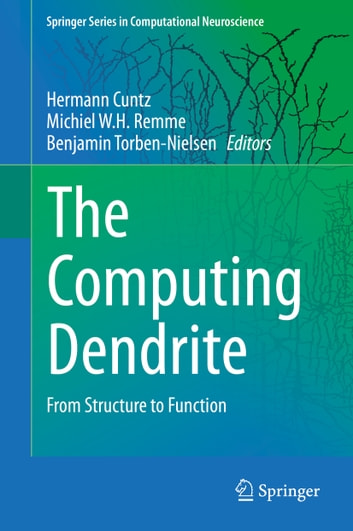 The Computing Dendrite - From Structure to Function ebook by