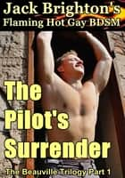 The Pilot's Surrender ebook by Jack Brighton
