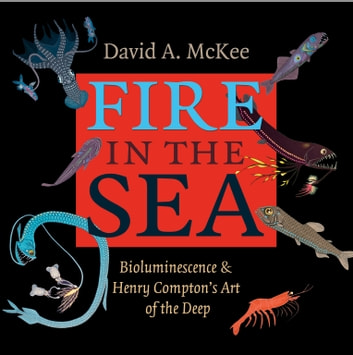 Fire in the Sea - Bioluminescence and Henry Compton's Art of the Deep ebook by David A. McKee,Henry Compton,Larry J. Hyde,Michael Barrett,Jennifer Hardell,Mark Anderson