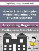 How to Start a Multiple-walled Insulating Units of Glass Business (Beginners Guide) ebook by Chadwick Randall
