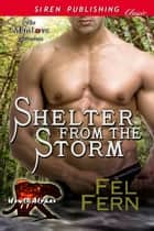 Shelter from the Storm ebook by Fel Fern