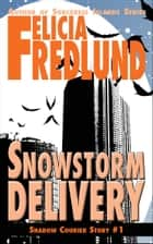 Snowstorm Delivery ebook by Felicia Fredlund
