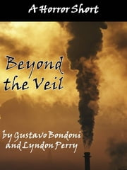 Beyond the Veil ebook by Lyndon Perry