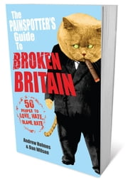 The Painspotter's Guide to Broken Britain - 50 People to Love, Hate, Blame, Rate ebook by Andrew Holmes