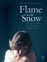 Flame in the Snow: The Love Letters of André Brink & Ingrid Jonker ebook by Galloway, Francis