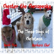 Chester the Chesapeake Book Five: The Three Dogs of Christmas ebook by Barbara Ebel