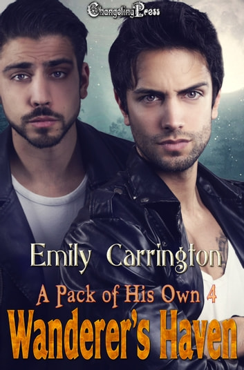 Wanderer's Haven ebook by Emily Carrington