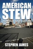 American Stew - Hope in a Toxic Culture ebook by Stephen James