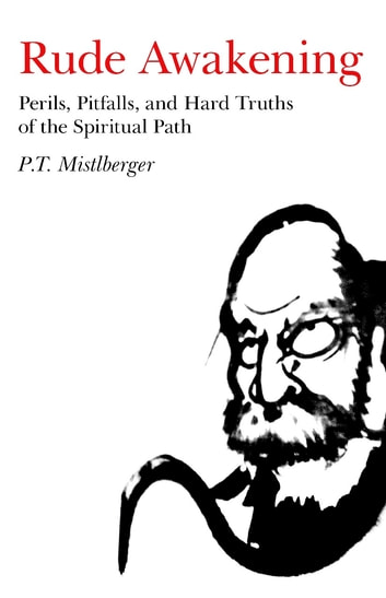Rude Awakening - Perils, Pitfalls, and Hard Truths of the Spiritual Path ebook by P. T. Mistlberger