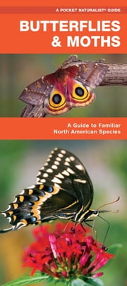 Butterflies & Moths - A Folding Pocket Guide to Familiar North American Species ebook by James Kavanagh,Raymond Leung
