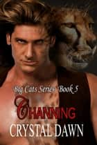 Channing ebook by Crystal Dawn