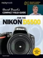 David Busch's Compact Field Guide for the Nikon D5500 ebook by David D. Busch