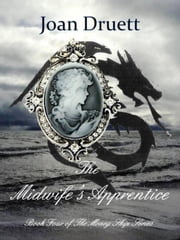 The Midwife's Apprentice - The Money Ship, #4 ebook by JOAN DRUETT
