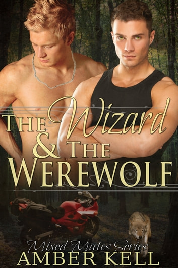 The Wizard and The Werewolf ebook by Amber Kell