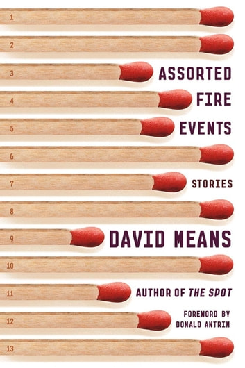 Assorted Fire Events - Stories ebook by David Means