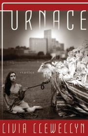 Furnace ebook by Livia Llewellyn
