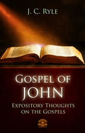book of john commentary pdf