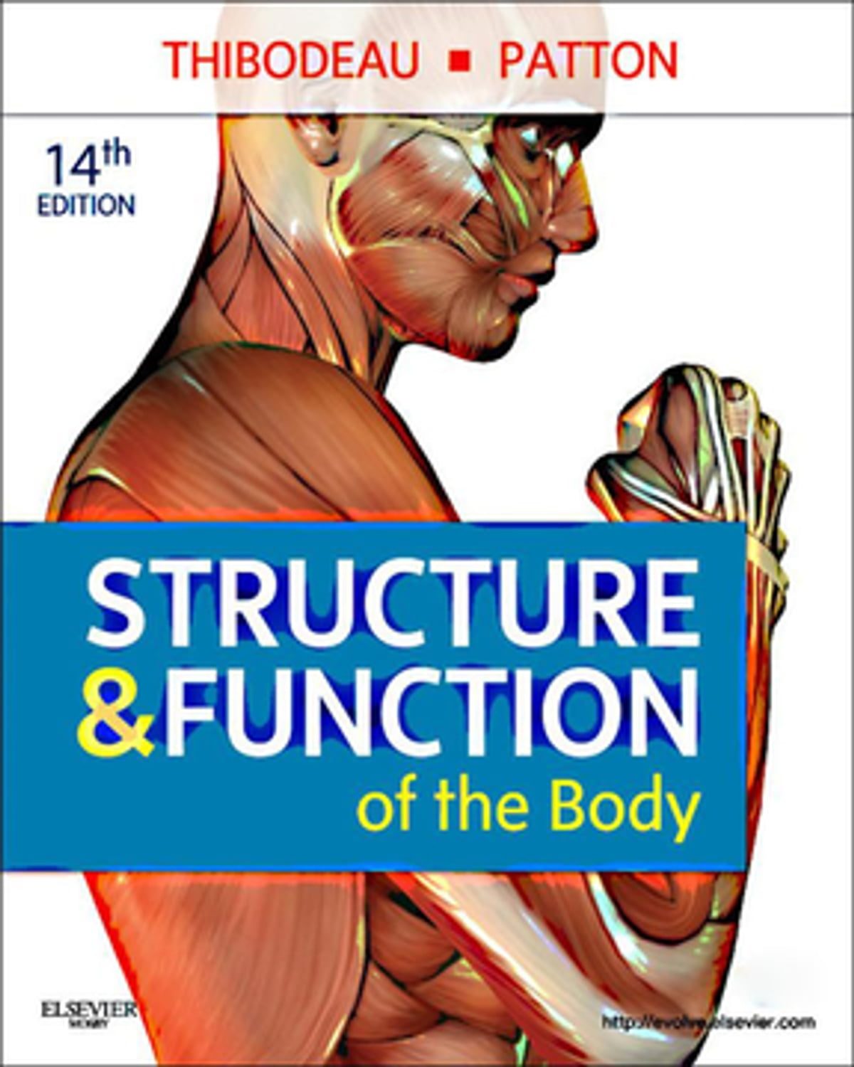 Structure Function Of The Body E Book Ebook By Gary A Thibodeau