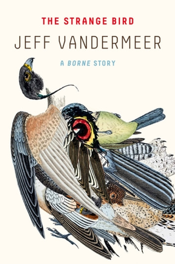 The Strange Bird - A Borne Story ebook by Jeff VanderMeer