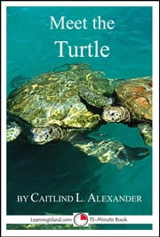 Meet the Turtle: A 15-Minute Book for Early Readers ebook by Caitlind L. Alexander