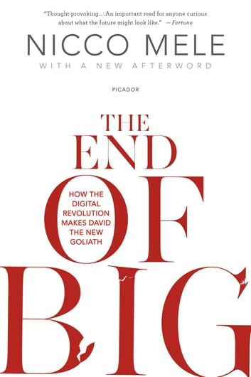 The End of Big - How the Internet Makes David the New Goliath ebook by Nicco Mele