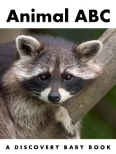 Animal ABC: A Discovery Baby Book ebook by A Discovery Book