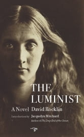 The Luminist - A Novel ebook by David Rocklin