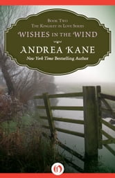 Wishes in the Wind ebook by Andrea Kane
