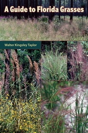 A Guide to Florida Grasses ebook by Walter Kingsley Taylor